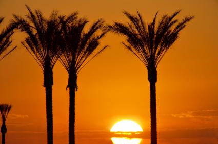 Vegas Sunrise_01