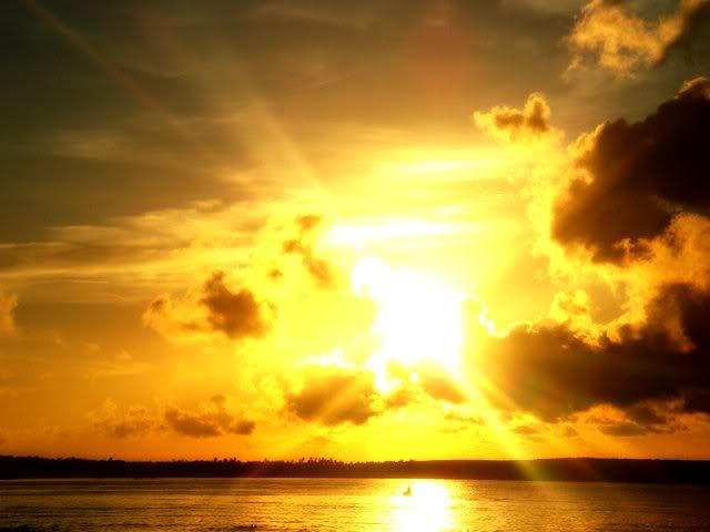 Beautiful Sunshine Day